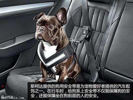 上海宠物用品进口要提前办理哪些手续