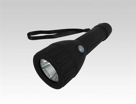 BAD206 轻便式防爆手电筒/LED防爆手电筒/LED防水防尘手电筒