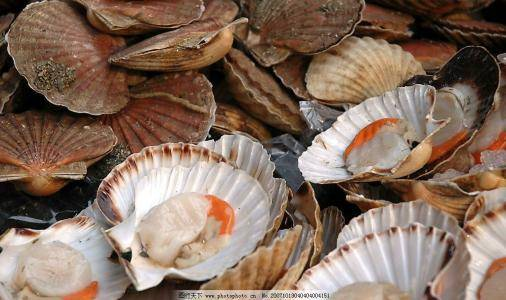 上海进口鲜活海鲜的一般贸易流程