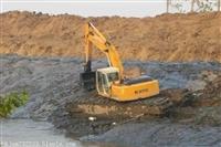 租赁湿地挖机宁德推荐
