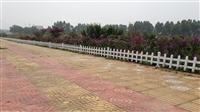 新闻:山东枣庄pvc草坪围栏全国出售