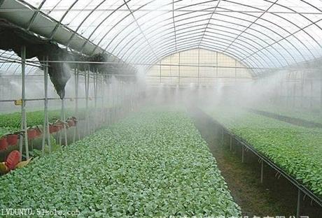 温室大棚喷雾加湿