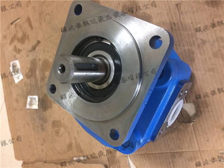 油泵齿轮油泵CBG2063/2063-BFPR八一机械