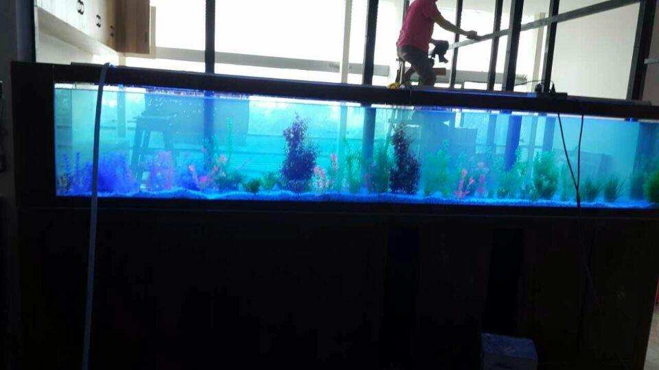 鱼缸设计公司,大堂观赏鱼缸定做费用贵不贵