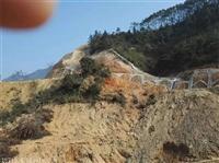 三級山體復綠施工護坡 適用草灌資材黔西南超低價