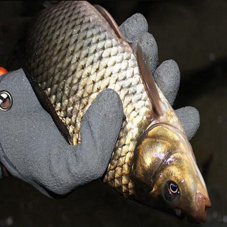 钓鱼抓鱼防刺防扎防滑手套 户外垂钓用品手