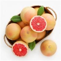 水果进口报关流程