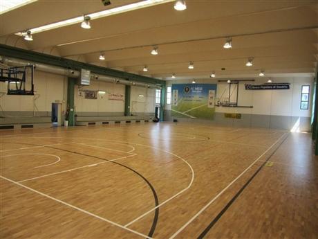 大中型体育馆篮球木地板价格