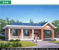 AZ029造价15万经济一层农村别墅设计图