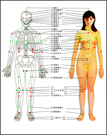 韩国心天泻血培训,人人都需要排瘀
