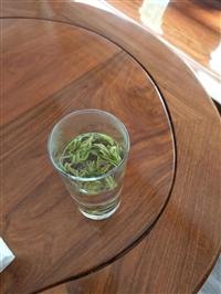 绿茶456754754