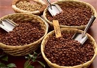 深圳咖啡豆进口报关代理