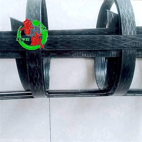 鲁威工程塑料土工格栅 道路专用 厂家直销