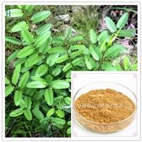 地榆提取物20:1 多种规格 地榆黄酮 地榆粉 地榆浸膏粉目数80-100