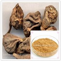 山慈菇提取物20:1规格可定制 山茨菇提取物 毛慈姑 比例提取现货