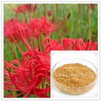 石蒜提取物10:1含石蒜碱 厂家供应 可定制规格 石蒜浸膏粉 现货