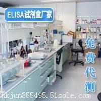 人水痘带状疱疹病毒IgGELISA实验要求