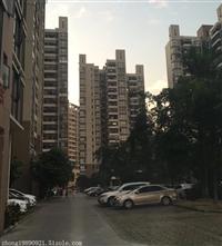 深圳村委统建楼出售