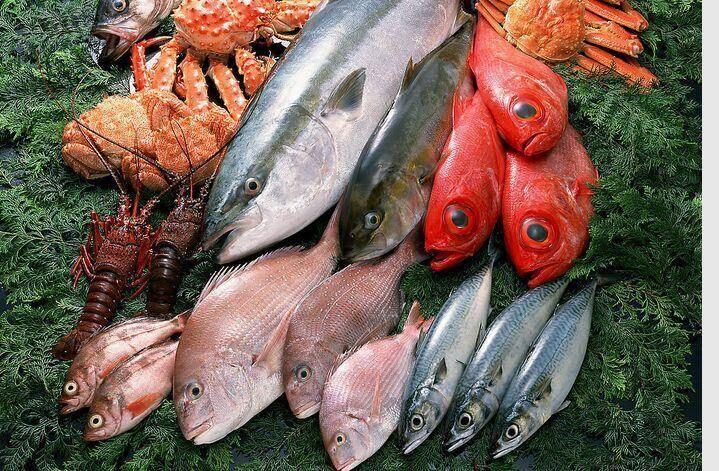 代理清关服务进口海鲜