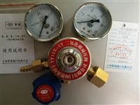 YT12X-1T二氧化碳减压阀调节器YT12X1T二氧化碳CO2压力表