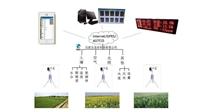 田间小气候观测站,农田四情监测的主要内容