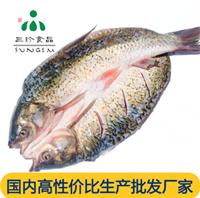 冰鲜冷冻开背草鱼 安徽三珍食品开背鱼厂家直销 烤鱼店专用