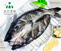 安徽三珍食品厂家直销 冰鲜冷冻开背清江鱼 烤鱼食材