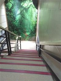中山小欖幼兒園環保耐磨PVC膠地板