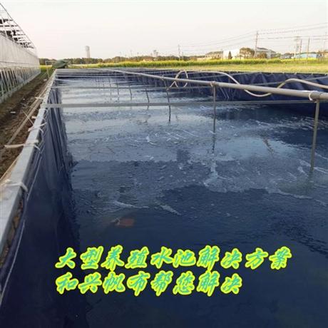 水产养殖场专用帆布、定做各类养殖帆布水池,养鱼养虾水池