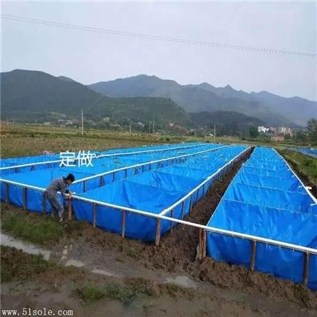 定做大个养虾池 养虾选用帆布池子 工厂化养殖效益高