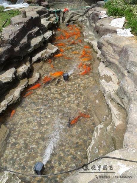 长沙室内鱼池观赏鱼池施工