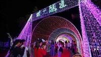 全国大型梦幻七彩灯光展,娱乐设备鲸鱼岛低价出租