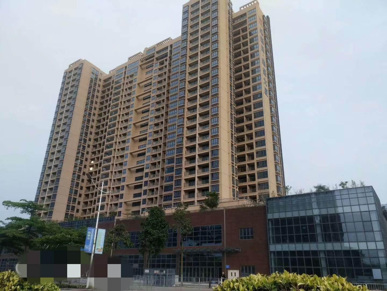 深圳村委统建楼坪山中心花园开盘均价19500每平可分期