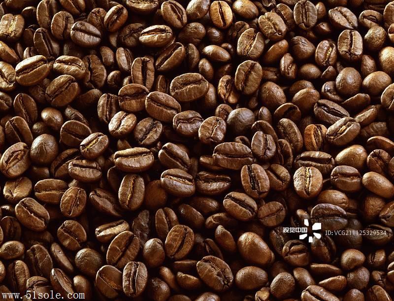 深圳蛇口咖啡豆进口报关
