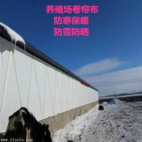 大型养殖设备 猪场卷帘布 电动卷帘布 帆布卷帘定做批发
