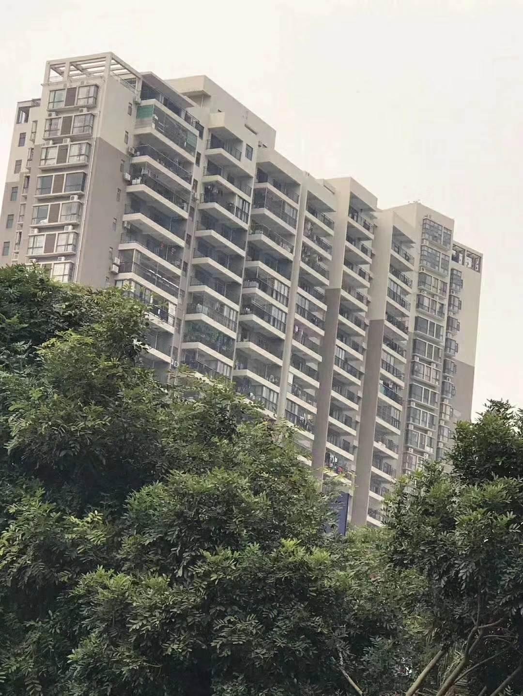深圳村委统建楼 石岩星耀名城 均价14800 可分期