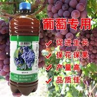 葡萄种植使用的EM菌液厂家批发代理