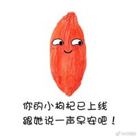 新品宁夏中宁枸杞 贡果枸杞 品质保证 包邮