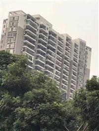 深圳村委统建楼石岩星耀名城均价14800可分期