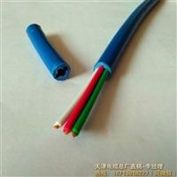 JVVP2*2*1.0仪表电缆