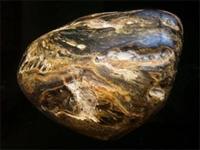鉴定琥珀原石去哪里