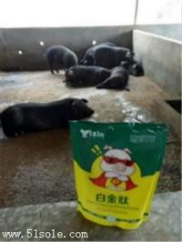 豬怎么喂長的最快  養豬一天長4斤秘方 養豬催肥絕招