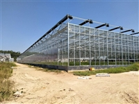 湖南永州智能农业大棚温室5米钢化玻璃墙、6000平米建造价格