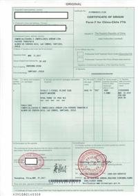 巴基斯坦产地证代办FOMR P