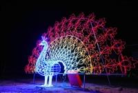 灯光节来袭侏罗纪灯光展厂家策划