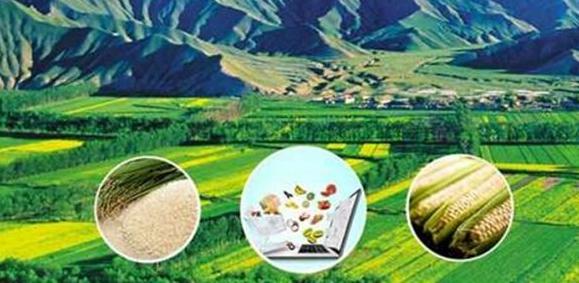 海南支持农村电商发展送产品引游客下乡