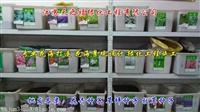 元宝枫种子种植技术-昌吉州元宝枫种子批发价格