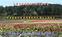 绿肥种子厂家直销-青海绿肥种子