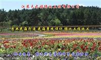 冬季綠肥種子出售-黑河噴播護坡草種子
