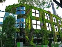北京阳台绿化施工
